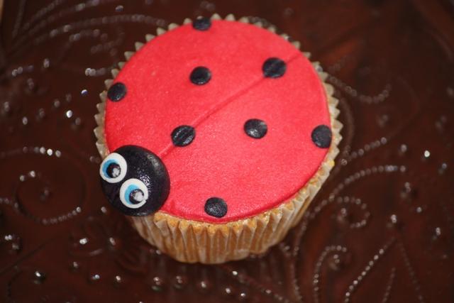 Cupcake_b_dieren_lieveheersbeestje.jpg