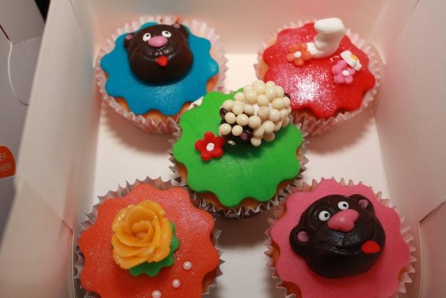 Cupcakes_Ellemijn_3_jaar_53.jpg